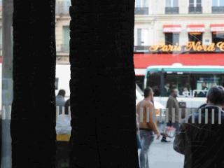2014.ArbresBrules_SNCFParisGareduNord149w