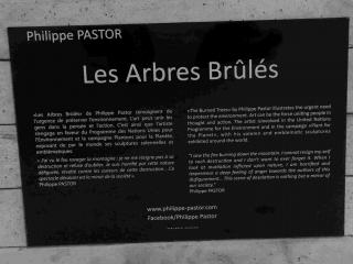 2014.ArbresBrules_SNCFParisGareduNord114