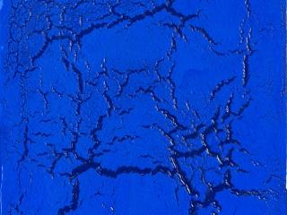 Philippe PASTOR 2012Colle et pigments sur toile116x89cm