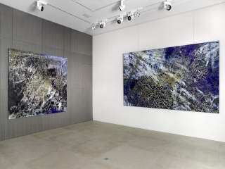 Philippe PastorTerre & MétamorphosesVues Exposition Monaco Modern Art 2019