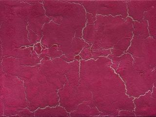 Philippe PASTOR 201717 008 BMtechnique mixte et pigments sur toile73X100cm